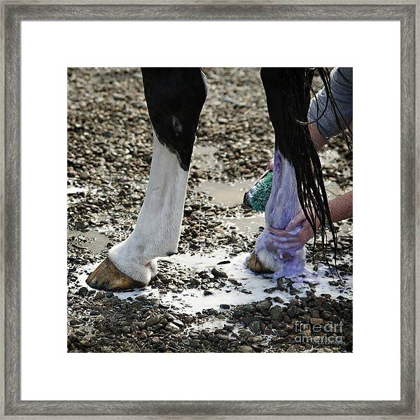 Purple And Green Equals White Framed Print