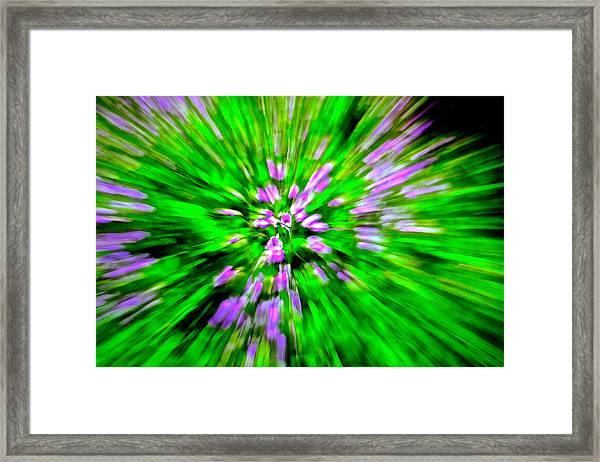 Purple Burst Framed Print