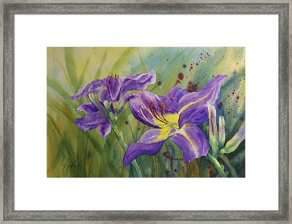 Purple Day Lily Framed Print