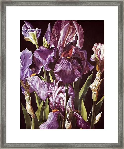 Purple Fantasy Framed Print