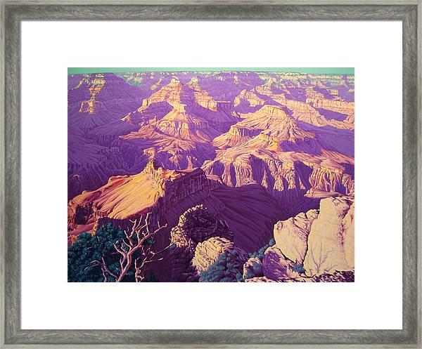 Purple Splendor Framed Print