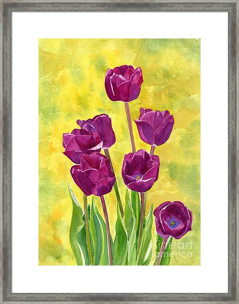 Purple Tulips With Textured Background Framed Print