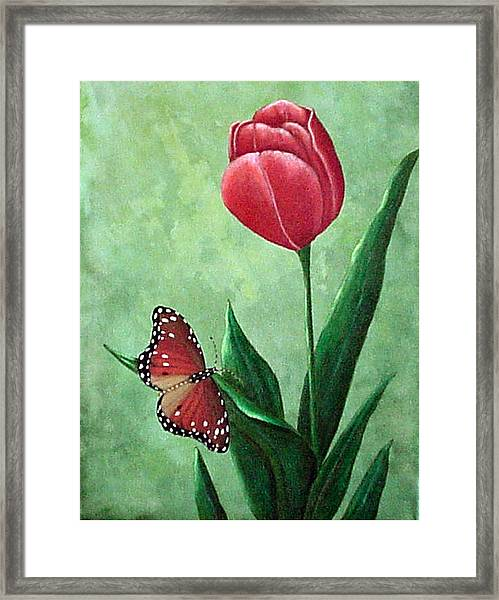 Queen Monarch And Red Tulip Framed Print