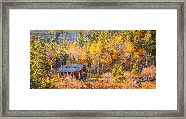 Quiet Cabin Framed Print