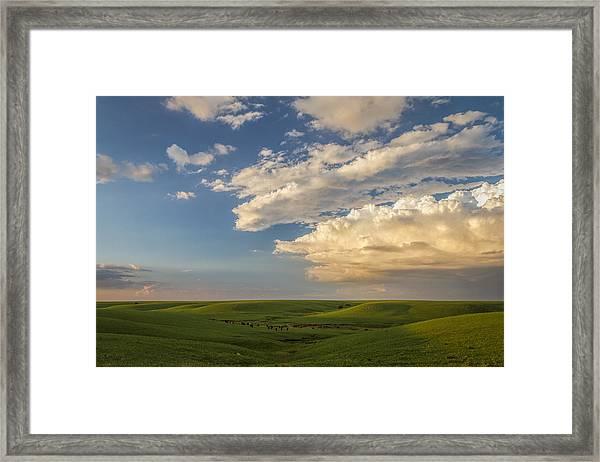 Quiet On The Prairie Framed Print
