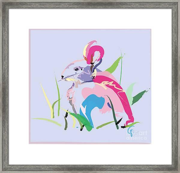 Rabbit - Bunny In Color Framed Print
