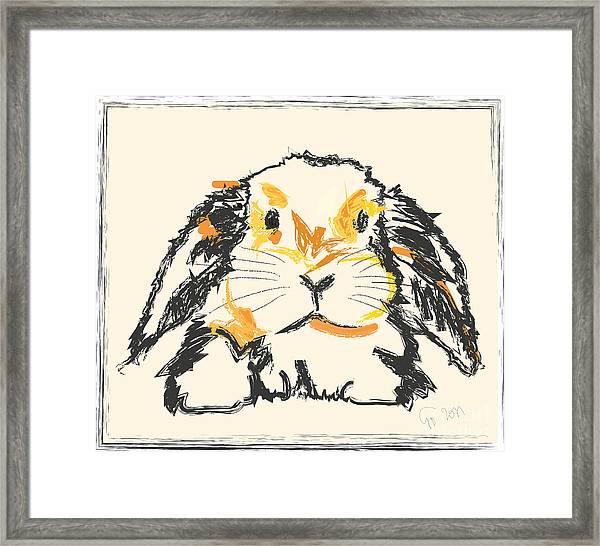 Rabbit Jon Framed Print