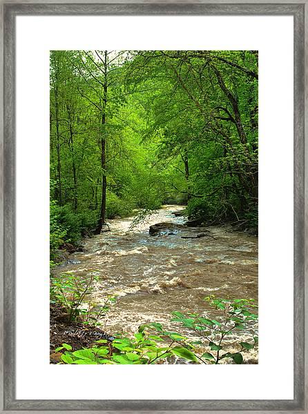 Raging Waters - West Virginia Backroad Framed Print