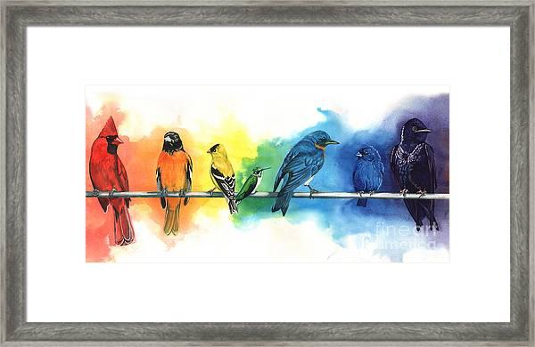 Rainbow Birds Framed Print