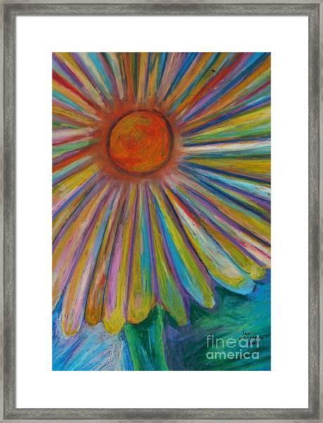 Rainbow Daisies Framed Print