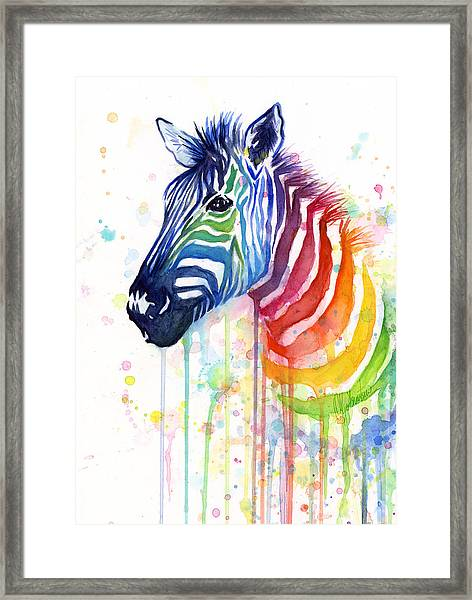 Rainbow Zebra - Ode To Fruit Stripes Framed Print