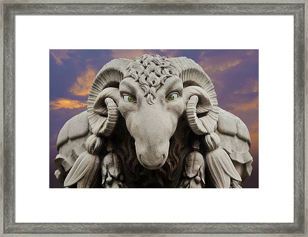 Ram-a-sees Framed Print