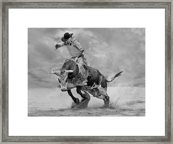 Ram Rodeo Framed Print
