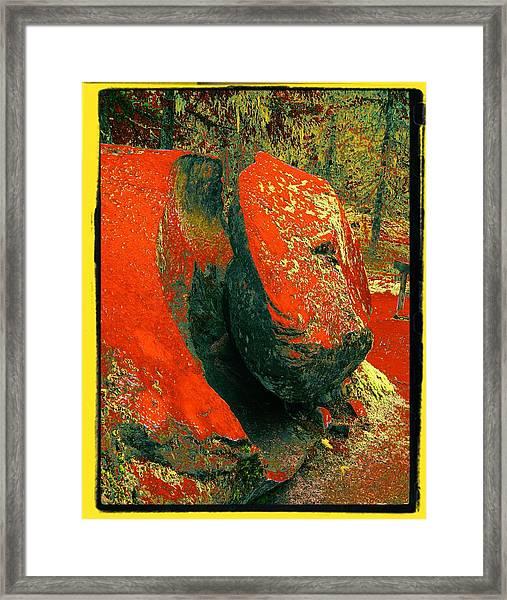 Ramona's Offspring Framed Print