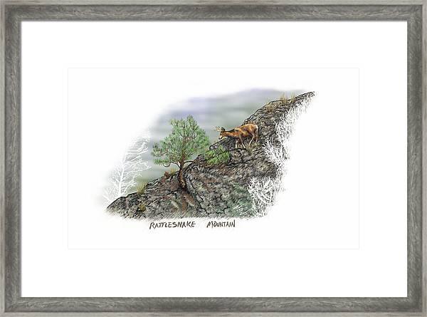 Rattlesnake Mountain Framed Print