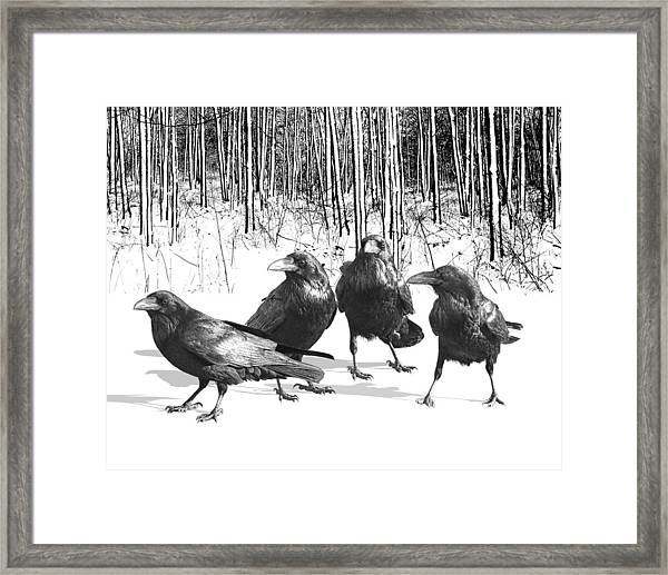 Ravens By The Edge Of The Woods In Winter Framed Print