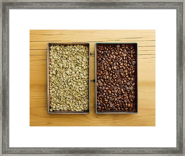 Raw Vs Roasted Coffee Beans In Trays Framed Print