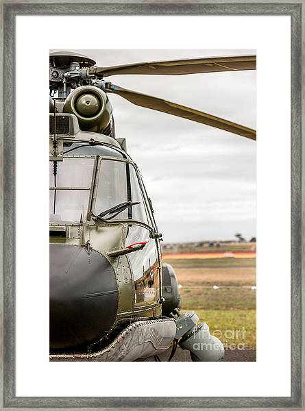 Ready For Action II Framed Print