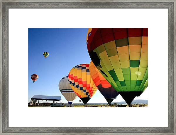 Ready For Take-off Framed Print by Becky Maness