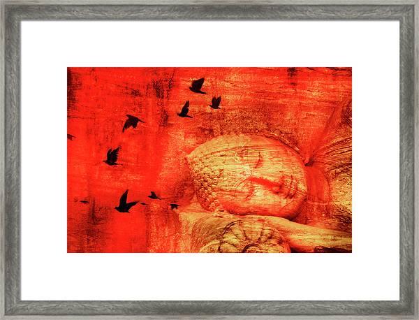 Reclining Buddha Framed Print by Grant Faint