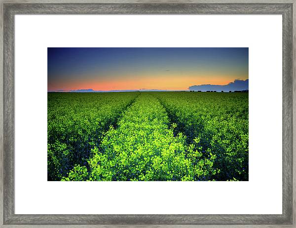 Red And Yellow Sunset Framed Print