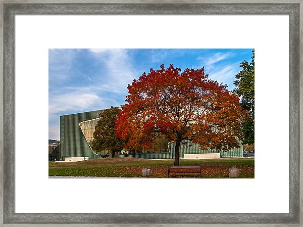Red And Yellow Tree At The Front Of The Museum Of The History Of Polish Jews In Warsaw Framed Print