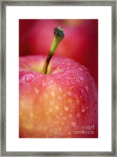 Red Apple Macro Framed Print