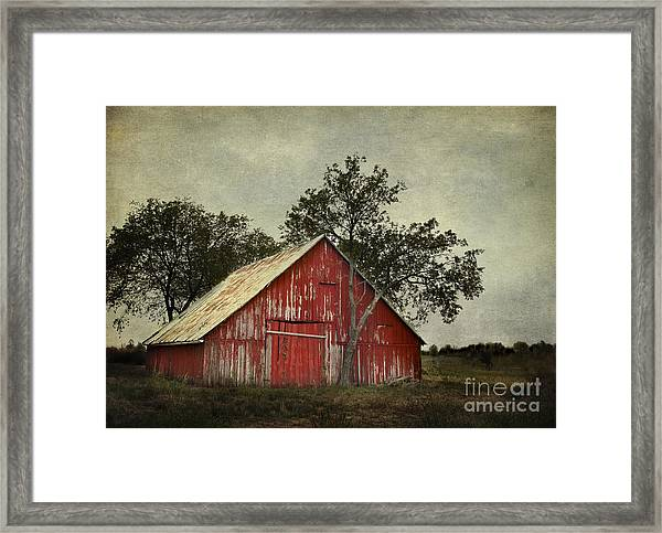 Red Barn With A Tree Framed Print