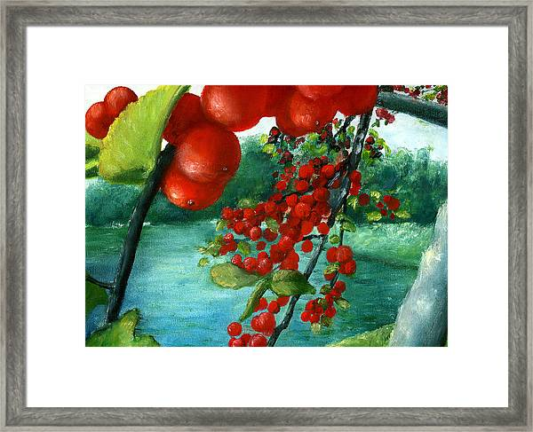 Red Berry Tree On Louisiana Pond Framed Print