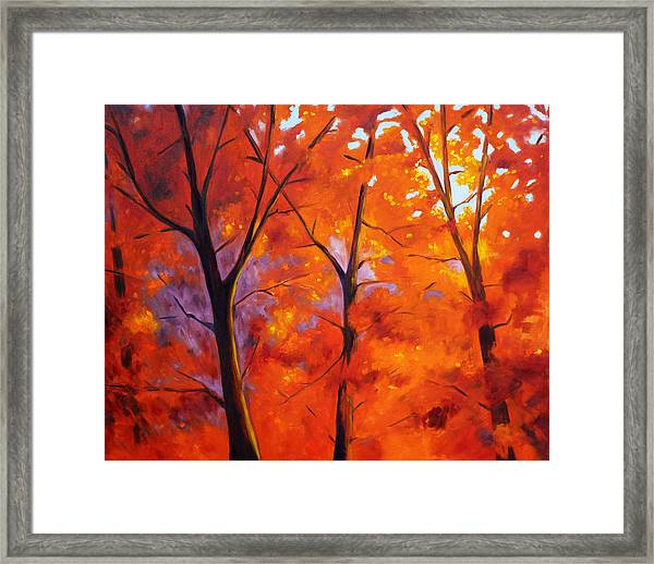 Red Blaze Framed Print