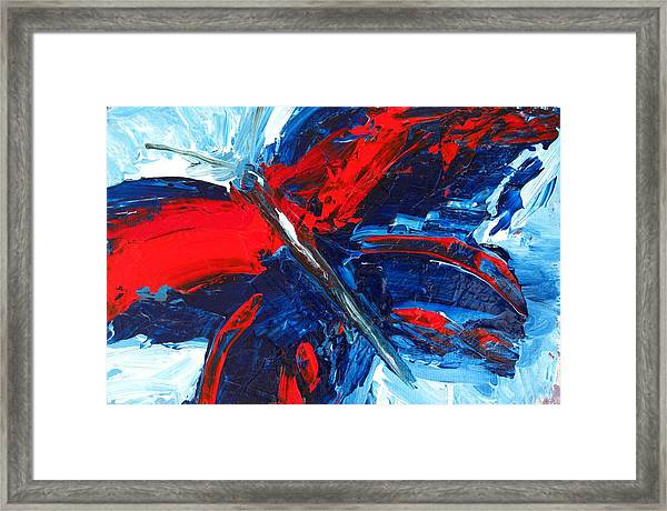 Red Blue Butterfly Framed Print