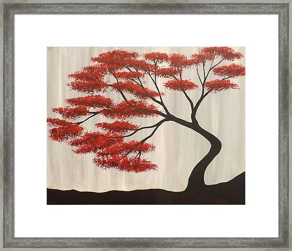 Red Bonsai Framed Print