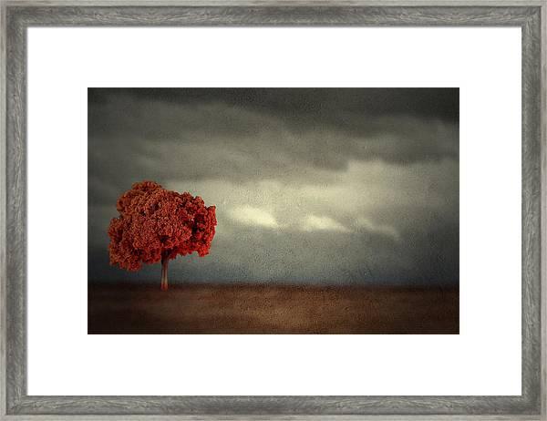 Red Carpet Thunder Framed Print