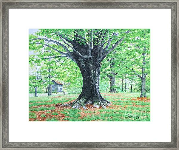 Red Clay Tennessee Framed Print
