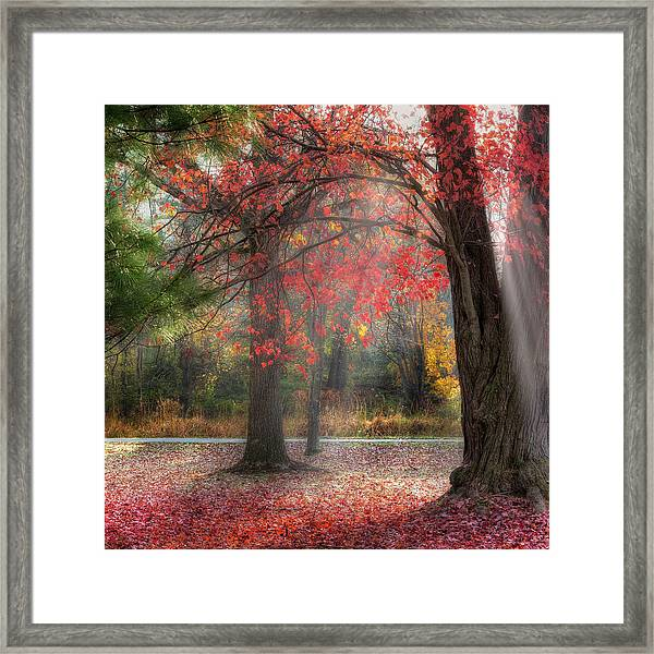 Red Dawn Square Framed Print