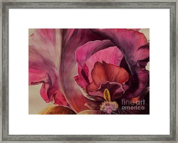 Red Explosion Sold Framed Print