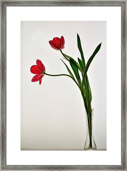 Red Flowers In Glass Vase Framed Print