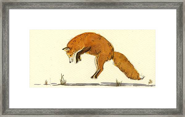 Red Fox Jumping Framed Print by Juan  Bosco