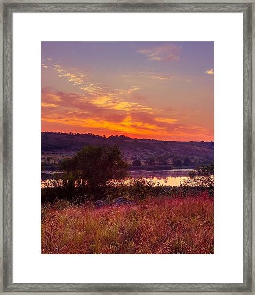 Red Grass Framed Print