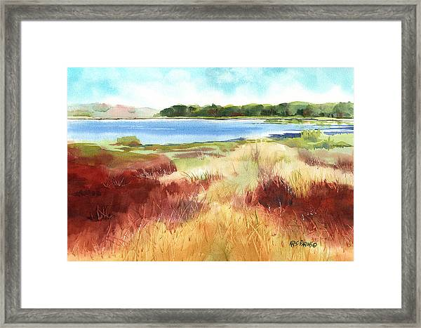 Red Marsh Framed Print