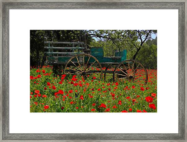 Red Poppies With Wagon Framed Print