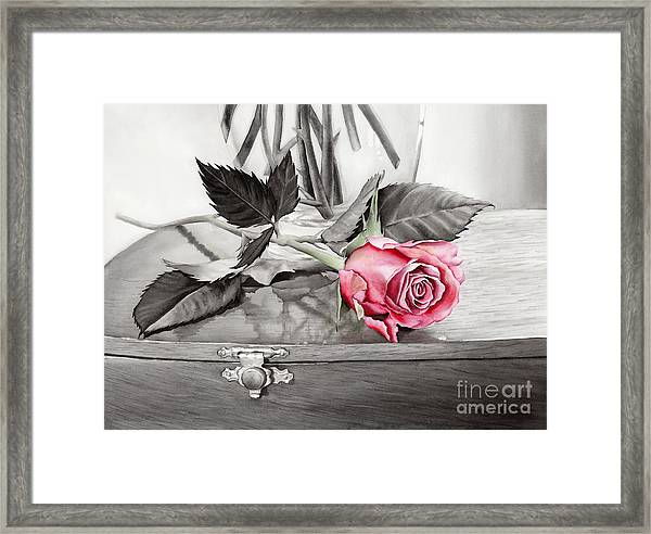 Red Rosebud On The Jewelry Box Framed Print