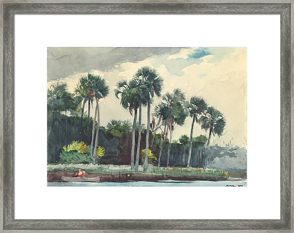 Red Shirt Homosassa Florida  Framed Print