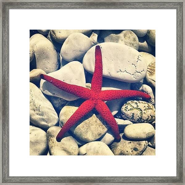 Red Star! Framed Print