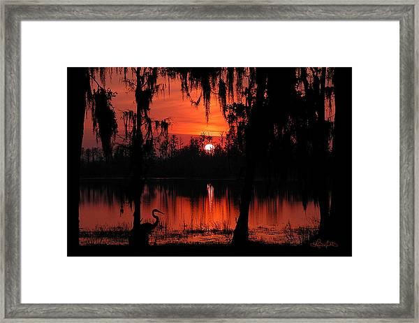 Red Swamp Framed Print