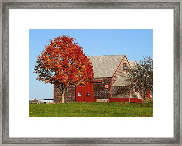 Red Trim Framed Print