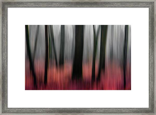 Red Wood Framed Print by Gilbert Claes