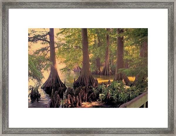 Reelfoot Lake At Sunset Framed Print