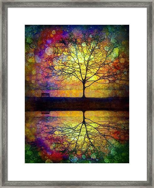 Reflected Dreams Framed Print
