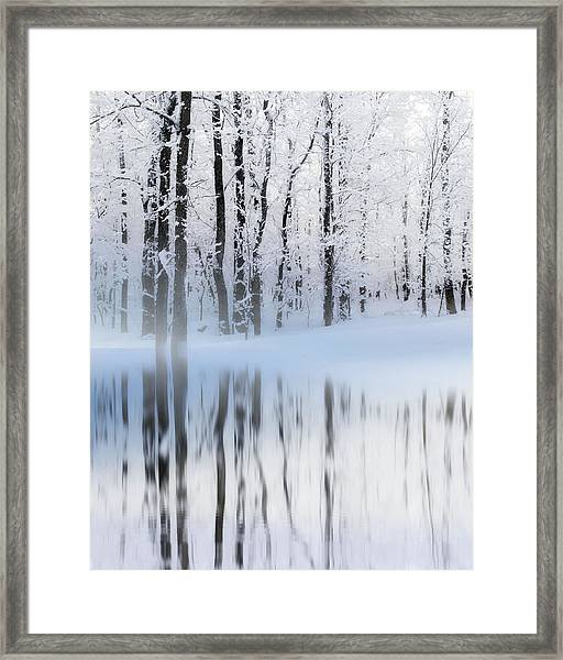 Reflection On A Dream Collingwood, On Framed Print